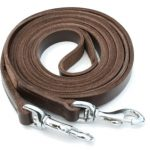 Leather in Hand Reins with Clips