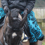 turquoise Comfy Rider Superskirt