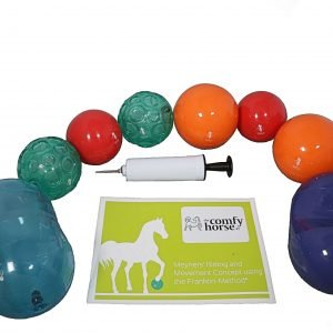 Franklin Balls for horse riding and pilates