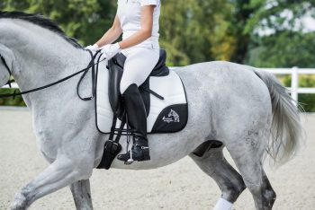 comco-outdoor-adventures-3d-air-dressage-white-saddle-pad