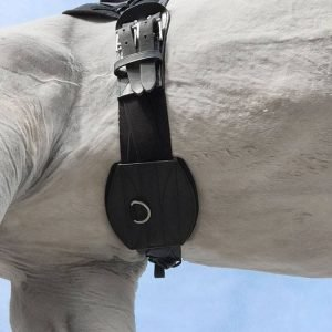 Tapestry Comfort Girth dressage