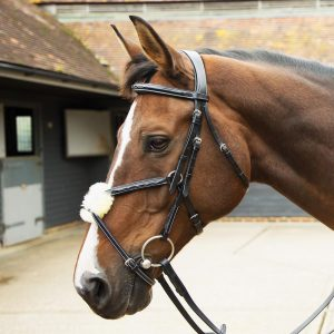 KM Elite Grackle Bridle Havana