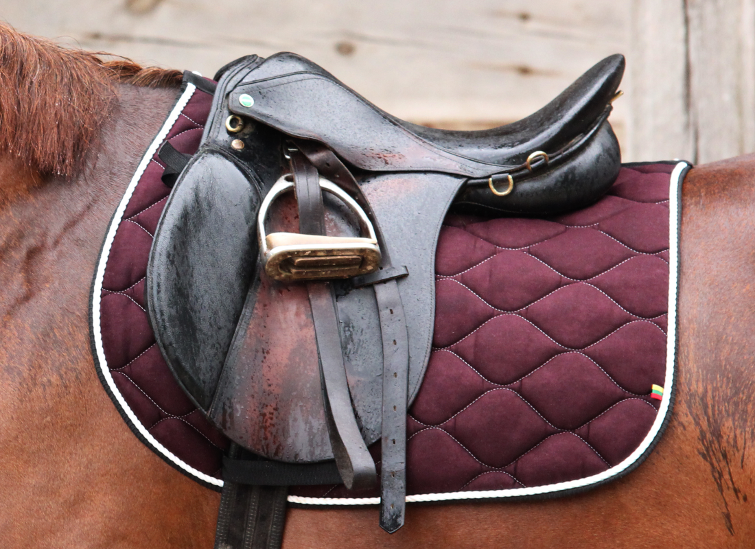 dark chocolate saddlepad