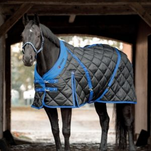 catago 300g stable rug